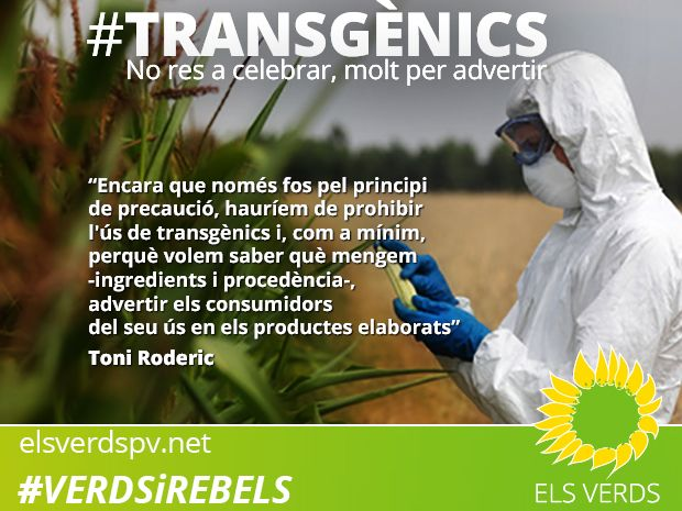 Transgènics: no res a celebrar, molt per advertir