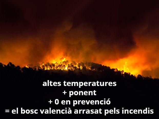 Altes temperatures + ponent + 0 en prevenció = el bosc valencià arrasat pels incendis. Per una nova política forestal
